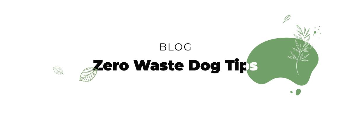blog_dog_tips_zero-waste